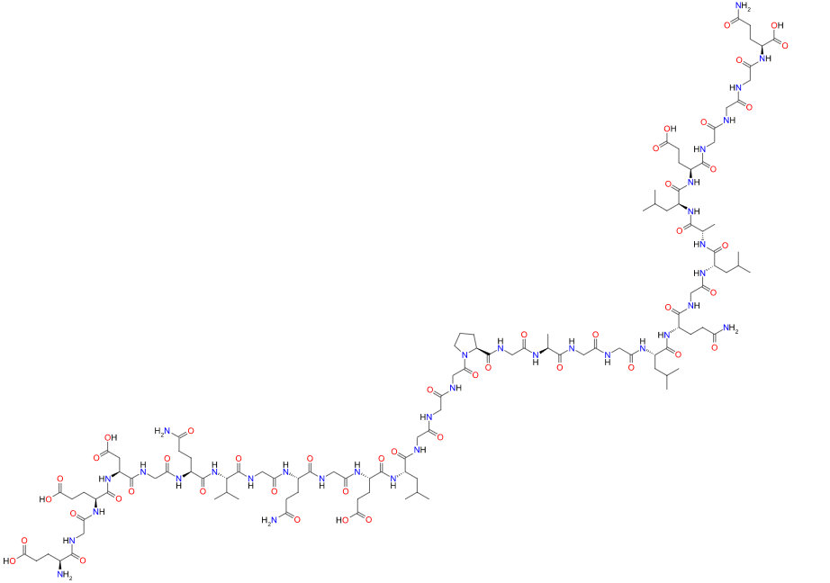 c-peptide protein is made up of 31 amino acids.figure